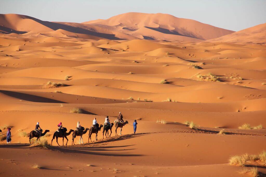 """נדל""""ן בישראל - עם ישראל במדבר בדרך לקנות דירות"""